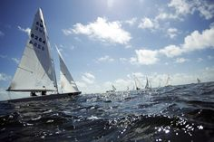 Swedish team bpat races in the Star series of Miami Olympic Classes Regatta, Biscayne Bay, Miami. More than 500 sailors from 44 countries competed. (1/24/2012)