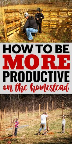 No matter if you are new to homesteading or an old pro these 5 tips will help you be more productive and acheive your homestead goals! Homestead Layout, Homestead House, Homestead Gardens, Homestead Survival, Survival Tips, Survival Skills, Survival Quotes, Homesteading Blogs, Urban Homesteading