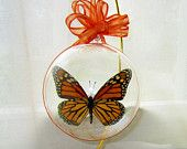 Ball Ornament Real Monarch Butterfly Athenianaire on Etsy $33.99 Part of an etsy treasury of interesting and inspiring gifts to give and receive http://www.etsy.com/treasury/MTU2ODc4NzB8MTE0NDY2MTI1MA/dreamland?index=10