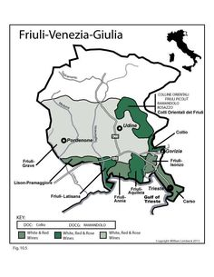When it comes to fine italian wine, the regions of Italy might come to mind, with their lush, rolling hills where the finest grapes are still hand-picked Boot Camp, Society Of Wine Educators, Wine Education, Regions Of Italy, Wine Cocktails, Italian Wine, Trieste, Wine And Beer, Wine And Spirits