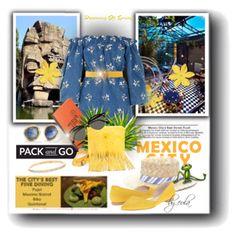 Pack and Go: Mexico City by eula-eldridge-tolliver