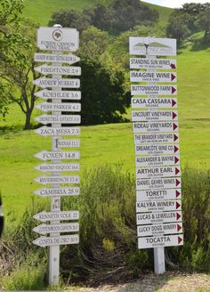Which wineries should we visit? Oh, the choices as we arrive in the Santa Ynez Valley (near Santa Barbara) on a SIDEWAYS tour with our Elite Adventure Tours guests. Visit Los Angeles and spend a day up here enjoying fruit of the vine.