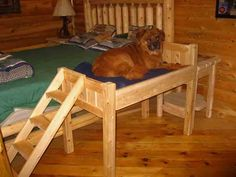 Dog Ramps On Pinterest Dog Ramp Dog Stairs And Panel Bed