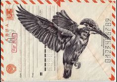 Birds drawn on vintage envelopes by Mark Powell