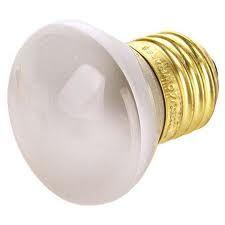 R Type Bulbs