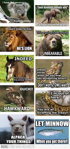 All the animal puns...cute & funny, made me smile with the word play :)