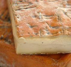 Taleggio is an aromatic but a mild flavored cheese.