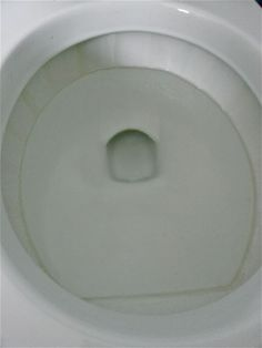 Get Rid of the Lime Scale Ring in the Toilet Bowl
