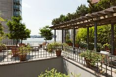 Former Robert DeNiro apartment in West Village -The upper level of the large landscaped terrace.