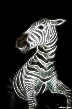 A Startled Fractal Zebra in Darkness.