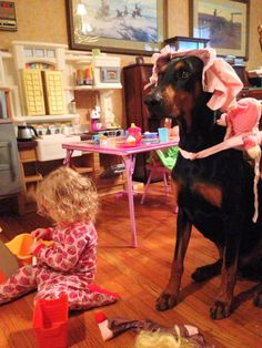 Dobermans, they do anything for their people. ^_^