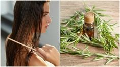 Rosemary is a healing plant used since ancient times as a natural ingredient in beauty … Health And Nutrition, Health Tips, Water Flowers, Women Life, Body Care, Your Hair, Cool Hairstyles, Hair Care, Hair Beauty