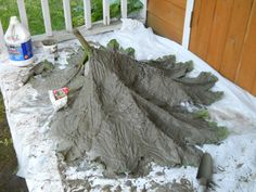 How to cast Gunnera leaf in concrete (note,use fiber reinforcement like hyper tufa uses and smaller leaf)