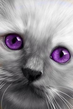Purple Photo Shopped Eyes