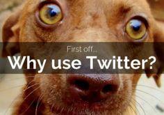The Beginner's Guide to Twitter Advertising