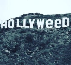 The original #hollyweed sign from 1976! It's gonna be a great year for legalization #Hollyweed #Hollywood #2017 #marijuana #legalweed #legalizeit #blaze #weedstagram #weed #420 #repost via @heytommychong