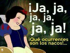 #nacos #memes