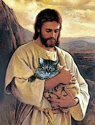 Jesus and cat. (Looks like my kitty Seven. :'( RIP little girl.)