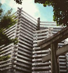 Kyoto archi. Japan  เกียวโต  京