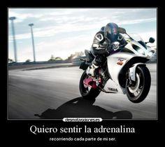 3efabe94dda Resultado de imagen para frases motos velocidad