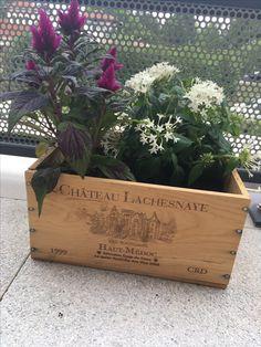 Jardinière caisse vin
