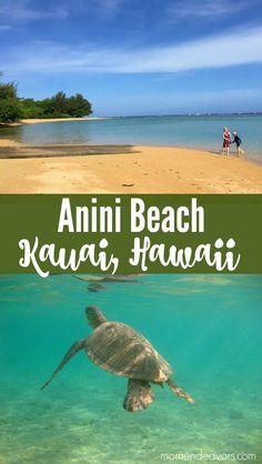Anini Beach Kauai, Hawaii - The beaches in Kauai are AMAZING! Hawaii is a land of dreams and rainbows. Beach Vacation Tips, Best Island Vacation, Kauai Vacation, Hawaii Honeymoon, Hawaii Travel, Beach Trip, Beach Vacations, Vacation Ideas, Beach Travel