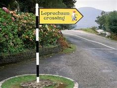 Only in Ireland...