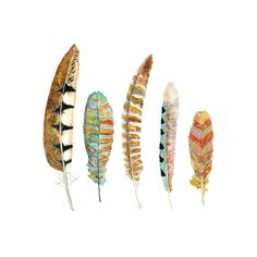 Feather Art.  Nature Decor.  Archival Watercolor Print..