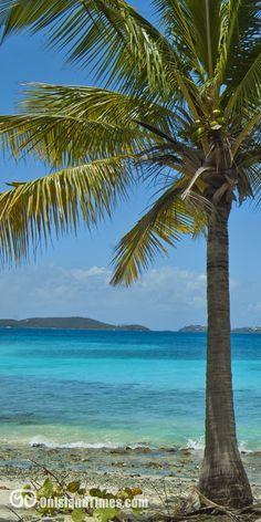 Frank Bay, Saint John, US Virgin Islands. #virginislandsnice Check out all of St John's beautiful beaches here www.stjohn-beachguide.com