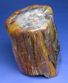 Bonhams Fine Art Auctioneers & Valuers: auctioneers of art, pictures, collectables and motor cars Cool Rocks, Beautiful Rocks, Minerals And Gemstones, Rocks And Minerals, Rock Collection, Mineral Stone, Petrified Wood, Rocks And Gems, Stones And Crystals