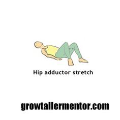 Hip Adductor Stretch - Grow Taller Exercises