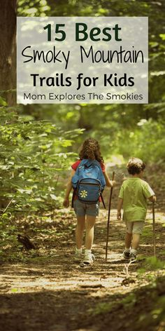 Great easy Smoky Mountain hikes for families with kids. Tennesee, TN, United Sta… Great easy Smoky Mountain hikes for families Great Smoky Mountains, Smoky Mountain Trails, Smoky Mountains Hiking, Smoky Mountain National Park, Mountain Hiking, Smokey Mountain, Mountain States, Appalachian Mountains, Gatlinburg Vacation
