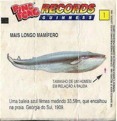 1- Ping Pong Records