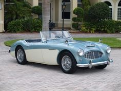 Austin-Healey 100 convertable. LOVE classic British cars! ljones1818