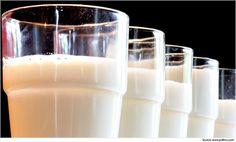What to Eat to Gain Weight Buffalo Milk