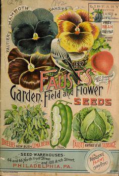 Faust's garden, field and flower seeds 1892