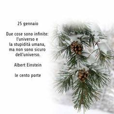 Christmas Wreaths, Holiday Decor, Calendar