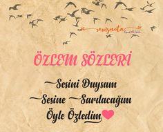 Nirvana, Istanbul, Nerd, Pictures, Proverbs Quotes, Otaku, Geek