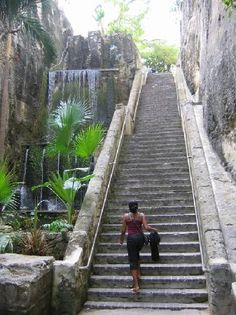 IT IS SO MUCH MORE BEAUTIFUL IN PERSON, LOVE IT! Queen's Staircase, Nassau, Bahamas