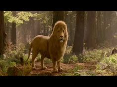 Aslan from the Chronicles of Narnia Prince Caspian Aslan Susan Pevensie, Lucy Pevensie, Aslan Narnia, Lucy Movie, The Silver Chair, Narnia Prince Caspian, The Magicians Nephew, Cowardly Lion, King Of The World