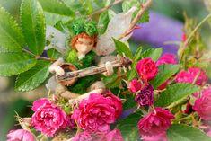 The Rosebush Celebration — Lavender & Lark