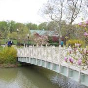77 free or cheap things to do in or near Annapolis, Maryland