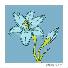 Coloring book app for adults! Amazing Flowers, Pretty Flowers, Pink Flowers, Nice Flower, Coloring Book App, Coloring Apps, Colorfy App, Creative Artwork, Mandala Art