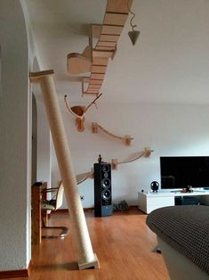 Find varied and practical ideas for the cat climbing wall! cats - cats - Find varied and practical ideas for the cat climbing wall! Cat Climbing Wall, Cat Shelves, Corner Shelves, Cat Playground, Playground Ideas, Indoor Playground, Pet Furniture, Modular Furniture, Furniture Plans