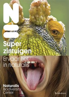 Naturalis Leiden is a Museum where you experience nature in all his aspects. Super!