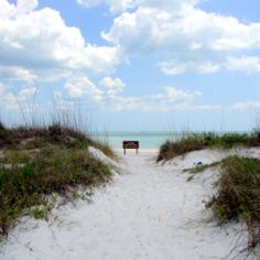 If you are looking for an escape from the world around you, look no further than Honeymoon Island State Park. Bring the entire family for a day. Honeymoon Island Florida, Dunedin Florida, State Parks, Islands, In This Moment, Mountains, World, Beach, Water