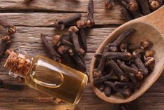Do you want to sleep better and to control your dreams? Get to know the benefits of clove oil. Clove Essential Oil, Essential Oil Diffuser, What Is Lucid Dreaming, Cloves Benefits, Cold Pressed Oil, Cinnamon Oil, Clove Oil, Deep Meditation, Natural Herbs