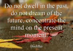 """Do not dwell in the past, do not dream of the future, concentrate the mind on the present moment."""" Buddha 