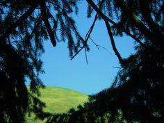 Peek a Boo, I see you blue skies