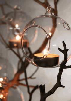 Glass Hanging Orbs Flat Bottom 80mm / 3 inch (set of 6); candles; I would paint the branch silver... also might be wedding or festive decor
